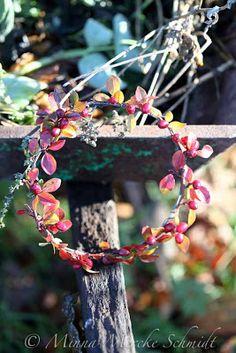 Blomsterverkstad: kitchen garden