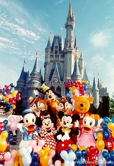 Mickey, Minnie, Donald, Daisy, Goofy, Winnie the Pooh plus Chip and Dale in front of Cinderella Castle.