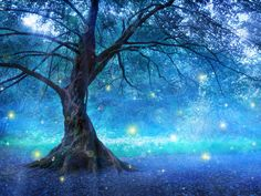Find folk tales and legends from all over the world in this book list for grades Fairy Tree, Book Lists, All Over The World, Mystic, Northern Lights, Scenery, This Book, Waves, Outdoor