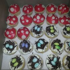 Woodland cupcakes - toadstool and bird's nests. All GLUTEN FREE!!!