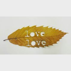 Love having a play :) I think there shall be more of these!! #mycamerastories #leaf #lasercut #type #font #text #mywork #love #words #create #art autumn #autumnal #Aberdeenshire #beautiful #play #fun #creativescotland #igers #vhairiwalkerphotographyanddesign #more #Scotland #happy #picoftheday by mycamerastories
