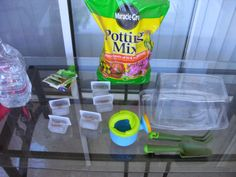 Baby food containers, out of gerber food containers- and a lettuce container  to create a mini greenhouse.