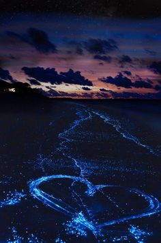 Sea of Stars in the Maldives! 20 UNREAL Travel Destinations you have to see! Click through to read the full post! Places To Travel, Travel Destinations, Places To Visit, Places Around The World, Around The Worlds, Nature Pictures, Amazing Nature, Beautiful Landscapes, Nature Photography
