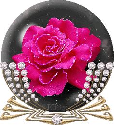 beautiful animation hearts  | ... Animation,+Beautiful+Rose+Animation,+Valentines+Day+Rose+Animation.jpg