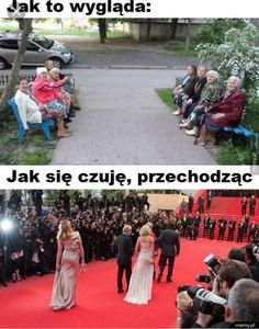 Read Memy Być from the story Memy To Życie. Wtf Funny, Hilarious, Funny Lyrics, Polish Memes, Weekend Humor, Funny Mems, Bad Mood, Reaction Pictures, Best Memes