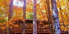 Fall at Hauser's Bayfield Cabin