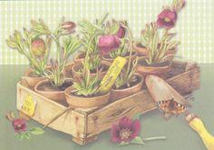 For the garden by Marjolein Bastin