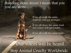 Stand Up.......HELP, RESCUE and ADOPT, please