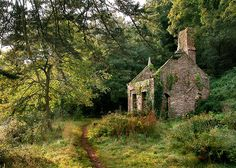 Abandoned house in Devon, England  (by nature adrift)  Visit www.exploreuktravel.co.uk for holidays in England