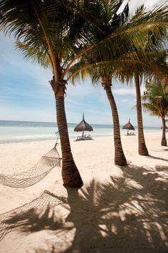 Panglao Island, Philippines: Take an hour-long flight from Manila to Bohol Island to visit this secluded isle.