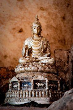 lotusunfurled: by Angela_Toidze Buddha Ayutthaya Ruins, Thailand Buddha Zen, Gautama Buddha, Buddha Buddhism, Buddhist Art, Gods And Goddesses, Compassion, Statues, Ayutthaya Thailand, Happiness