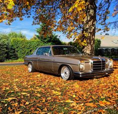 Beautiful W114 coupe on BBS rims from W114 tuning #mbpetrolhead #mercedes #benz #w114 #coupe #autumn #bbs #mercedesclassic #classiccars #germancar #classicbenz #mbusa #insidebenz #thebestornothing #mbfanphoto #mercclub