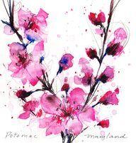 cherry blossom watercolor tattoo - Google Search