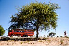 Afrika Teil1 - Von WIndhoek,Namibia nach Botswana ins Okavango Delta (10 von 118)
