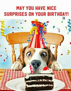 Image Result For Pictures Of Dogs Wishing Happy Birthday To A Dog
