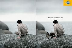 Pedigree | A dog makes your life happier