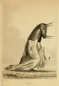 Image of ceremonial attire featured in Travels in Western Africa in the Years 1818, 19, 20, and 21 from the River Gambia, through Woolli, Gondoo, Galam, Kasson, Kaarta, and Foolidoo, to the River Niger  Forgotten Failures of African Exploration | The Public Domain Review
