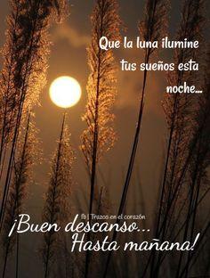 Que la luna ilumine tus sueños esta noche...¡Buen descanso...Hasta mañana! @trazosenelcorazon