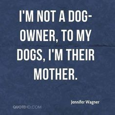 "And the mix of small child and pups all I hear all day is ""Mum? And the mix of small child and pups all I hear all day is ""Mum? I Love Dogs, Puppy Love, Cute Dogs, Dog Quotes, Animal Quotes, Pet Sitter, Crazy Dog, Dogs Of The World, Dog Owners"