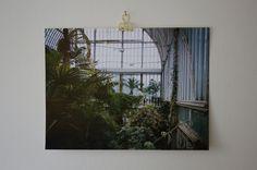 Print Secret Garden 1