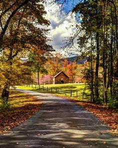 Country road (South Carolina) by Donnie Bagwell cr. Beautiful Roads, Beautiful Landscapes, Beautiful Places, Landscape Photos, Landscape Photography, Nature Photography, Country Life, Country Roads, Autumn Scenes