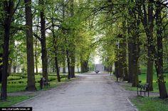 Žiar nad Hronom - Park 8