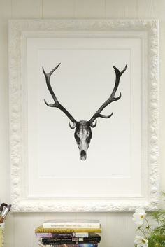 Limited Edition Framed Print by Kate Kessling - Deer Skull