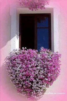 fenêtre au coeur rose