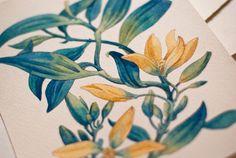 Watercolor Tale Illustrations by Tetiana Kartasheva, via Behance. So many beautiful watercolor illustrations!