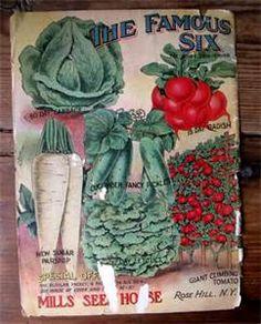 vintage burpee seed catalog Deer Stew, Burpee Seeds, Vintage Seed Packets, Catalog Cover, Seed Catalogs, 8th Of March, Garden Seeds, Flower Seeds, Potpourri