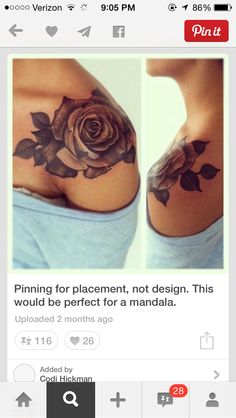 Love this rose and placement