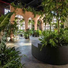 From floor to ceiling, this shop is covered in plants, including a green wall. See the impressive Greenery Unlimited, a biophilic design store for Greenery NYC. New York City Apartment, Minimalist Apartment, Higher Design, Outdoor Settings, Plant Design, Store Design, Design Shop, Design Art, Houseplants