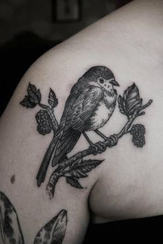 I will draw a bird on a branch one day and get myself a tattoo.  Bird etching tattoo by Otto D'Ambra.