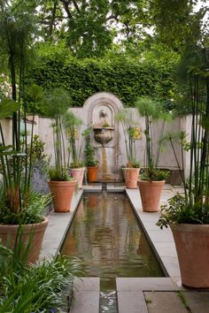 .rectangular pool and tall terracotta planters