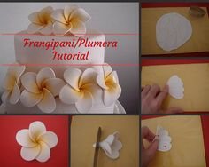 Of Wedding Cakes, Sweets and more.in Ipoh, Malaysia: Frangipani Tutorial Royal Icing Flowers, Fondant Flowers, Clay Flowers, Fondant Flower Tutorial, Fondant Figures Tutorial, Fondant Tips, Fondant Bow, Fondant Cakes, Fondant Recipes