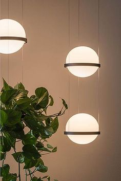 Palma suspension lamp by Antoni Arola for Vibia brings a natural element into the space with its integrated planter. Also available as a wall sconce. Pendant Lamp, Pendant Lighting, Ballon Lampe, Led Licht, Lampe Led, Glass Pendants, Light Decorations, Decor Interior Design, Modern Interior
