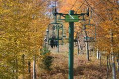 Fall colors up the ski life. Boyne Mountain #puremichigan