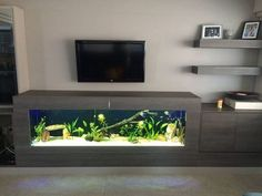 Stunning Indoor Aquarium Design Ideas for Inspiring Home Decorations - Page 3 of 23 Fish Tank Table, Fish Tank Stand, Aquarium Stand, Aquarium House, Aquarium Design, Fish Tank Design, Amazing Aquariums, Home And Deco, Inspired Homes
