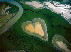 Photo by Yann Arthus-Bertrand. (His most famous photo).