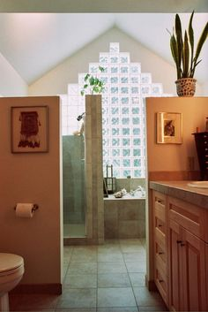 I love this bathroom - especially all the light coming through those south-facing glass blocks!