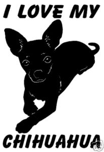 I love my chihuahua Tabitha Mae.  I resued her almost 5 years ago.  She has brought so much love and pleasure to my life.