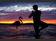 Les Sunsets Selfies de John Marshall