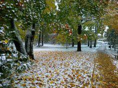 Počasí v Litoměřicích – Počasí.cz Sidewalk, Walkway, Walkways