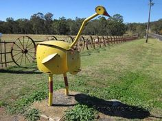 An abstract Emu letterbox in Coonabarabran, a town known as the gateway to the Warrumbungle National Park. Note the fence made of metal cart wheels, too!