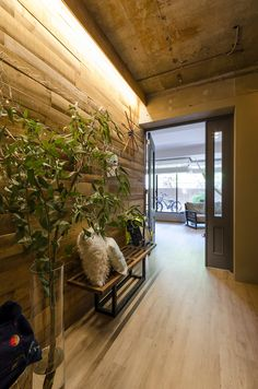 Wood Wallpaper, Wood Ceilings, My Dream Home, My House, Windows, Interior, Home Decor, Google, Cottage