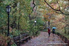 ¿Cómo recorrer Central Park?. Running, paseando o en bicicleta