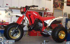 Looks just like mine....1986 Yamaha Tri-z!