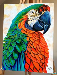 Wildlife Collection - Faith over Fear — Lauren Elizabeth Fine Art Bird Painting Acrylic, Parrot Painting, Watercolor Art, Bird Drawings, Animal Paintings, Bird Art, Art Pictures, Canvas Art, Canvas Painting Projects