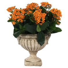 Silk orange kalanchoe arrangement in a ceramic urn. Product: Faux floral arrangementConstruction Material: Silk, plastic and ceramicColor: Orange, green and bisqueDimensions: H x DiameterCleaning and Care: For indoor use only Outdoor Thanksgiving, Cottage Homes, Faux Flowers, Joss And Main, Urn, Your Favorite, Planter Pots, Indoor, Autumn