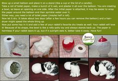 I made a Paper Mâché chew toy for Junno that was similar to this one. She loved it, but it was WAY too messy :( This idea looks like the perfect fix to the problem! Brought to you by the fantastic people (and bunny) from BunnyAproved.com!
